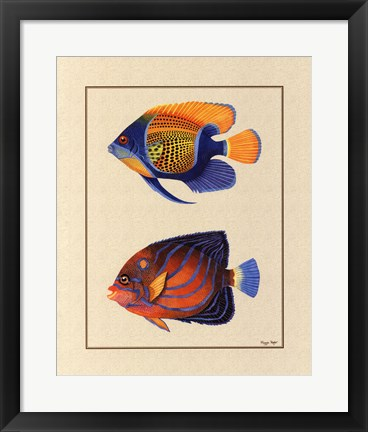 Framed Tropical Fish III Print