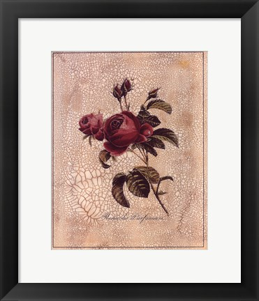Framed Rose Perfume Print