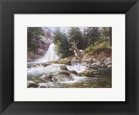 Framed Bucks Near Waterfall Print