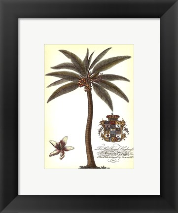 Framed Palm and Crest I Print