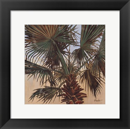 Framed Solitary Palm - Mini Print