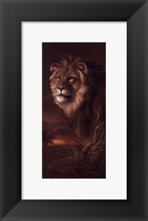 Framed Pride Of Africa Print