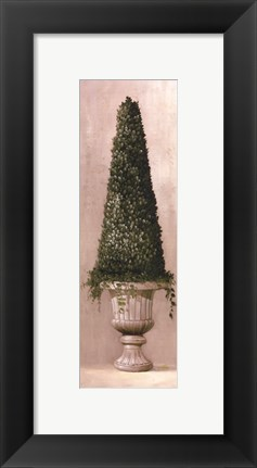 Framed Florentine Topiary ll Print