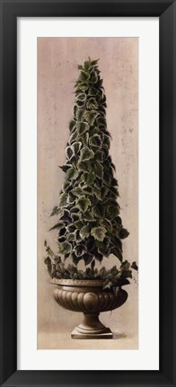 Framed Florentine Topiary l Print