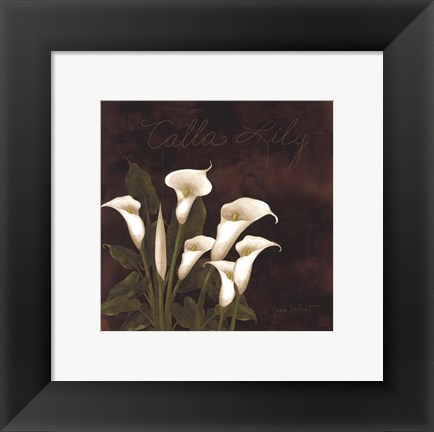 Framed Midnight Calla Lily Print