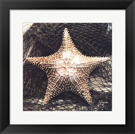 Framed Starfish With Net Print