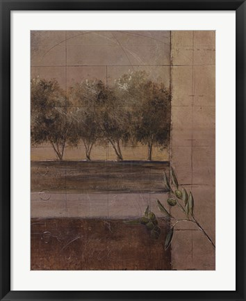 Framed Olive Groves II Print