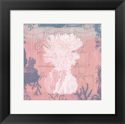 Framed Seaside Coral II Print