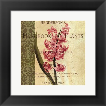Framed Hyacinth Print