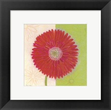 Framed Red Daisy Print