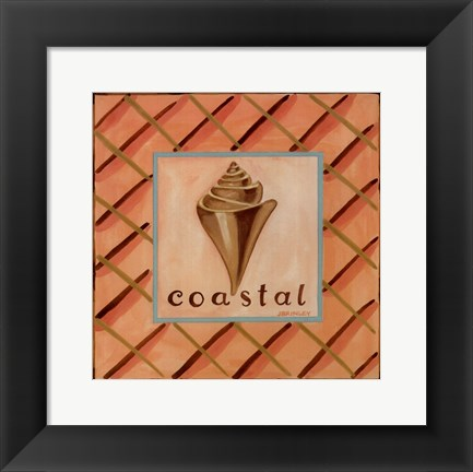 Framed Coastal IV Print