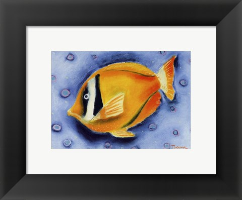 Framed White Banded Island Fish Print