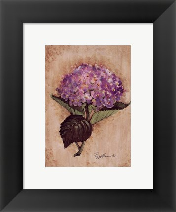 Framed Blooming Hydrangea Print