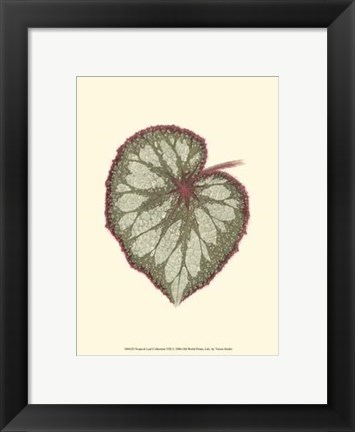 Framed Tropical Leaf Collection VIII Print