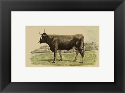 Framed Antique Cow III Print