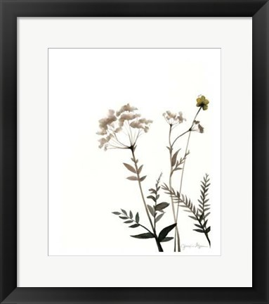 Framed Watermark Wildflowers IX Print