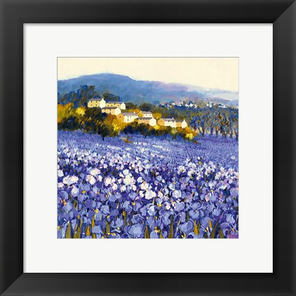 Framed Champs D'iris, Provence Print