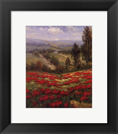 Framed Poppy Vista II Print