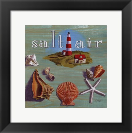 Framed Salt Air Print