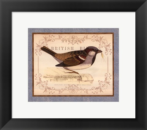 Framed British Birds III Print