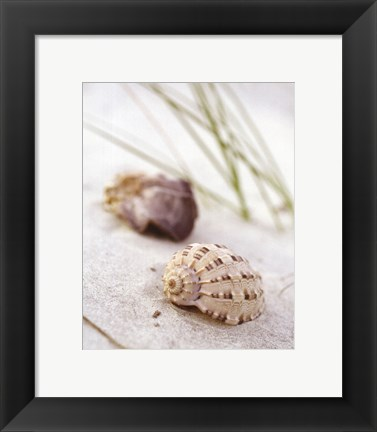 Framed Sandy Beach IV Print