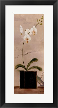 Framed Asian Orchid II Print