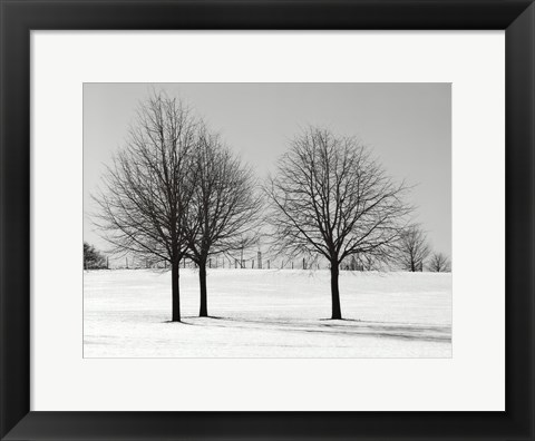 Framed Silhouettes Of Winter I Print