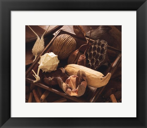 Framed Dried Flower Print