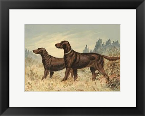Framed Irish Setter II Print