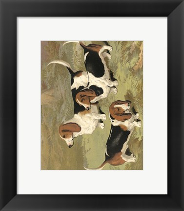 Framed Basset Hounds Print