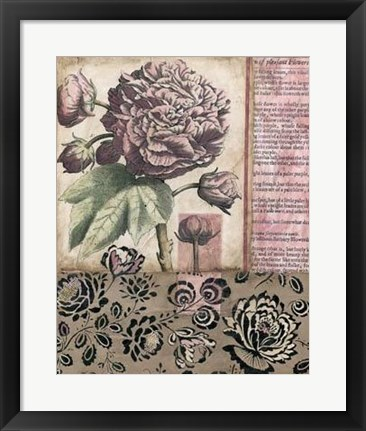 Framed Cottage Rose I Print