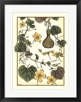 Framed Arts And Crafts Gourd Print