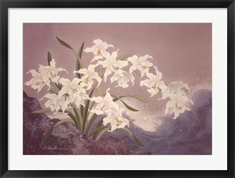 Framed White Orchids Print