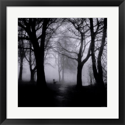 Framed Wooded Bench Print