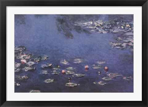 Framed Waterlillies Print