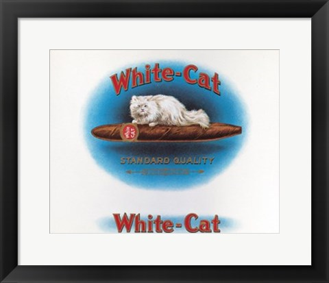 Framed White Cat Print