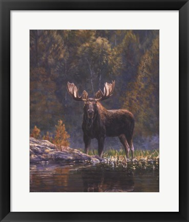Framed North Country Moose detail Print