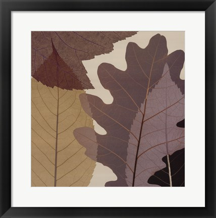 Framed 4 Leaves 1 Print