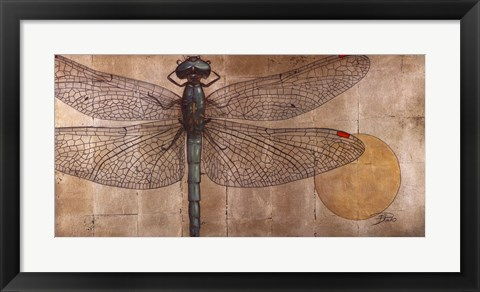 Framed Dragonfly On Silver Print