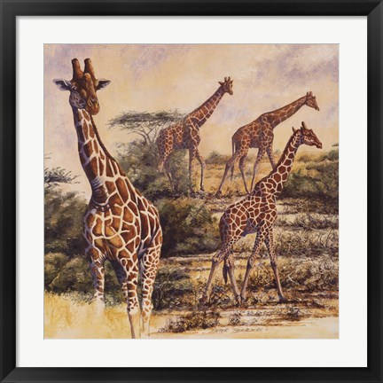 Framed Safari III Print