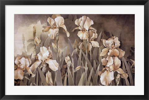 Framed Field of Irises Print