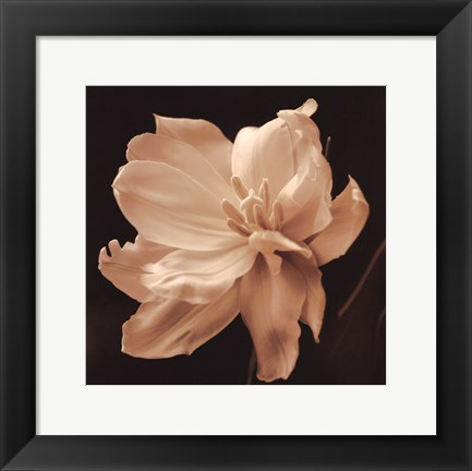 Framed Timeless Grace II Print