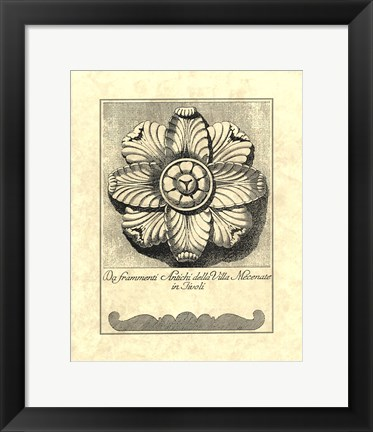 Framed Vintage Rosette And Profile II Print