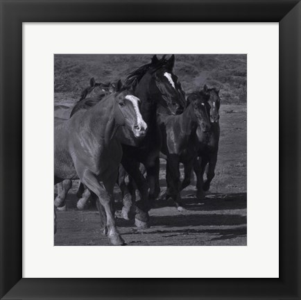 Framed Leader Of The Pack Print
