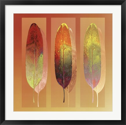 Framed Golden Mean Print