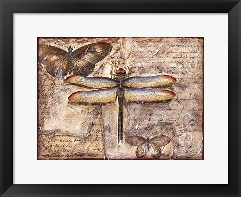 Framed Poetic Dragonfly II Print
