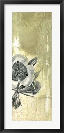 Framed Celadon in Bloom III Print