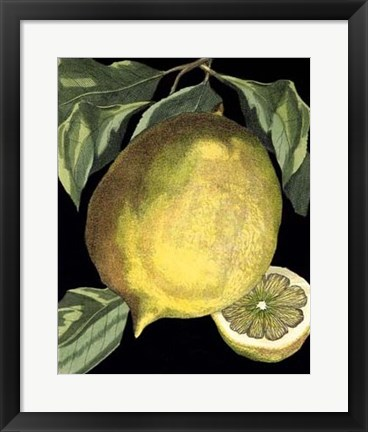 Framed Fragrant Citrus I Print