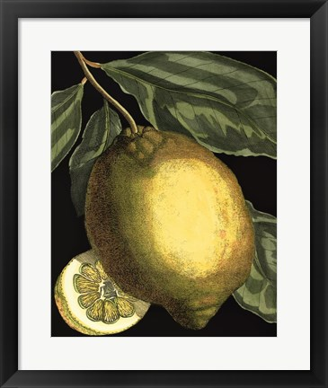 Framed Fragrant Citrus II Print