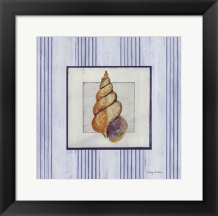 Framed Sanibel Shell II Print